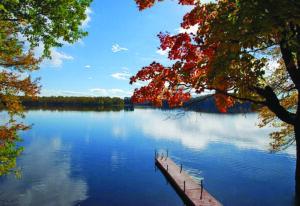 Lake-front cottage